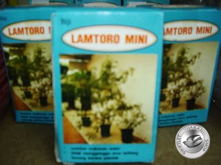 G19 LAMTORO MINI SEEDS 10GM